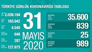Türkiye'deki koronavirüs vaka ve ölü sayısında son durum (31 Mayıs 2020)