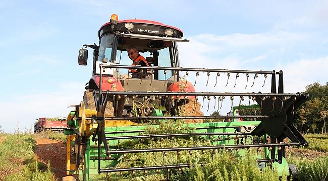 Tarımsal ürün çeşitliliği artıyor.